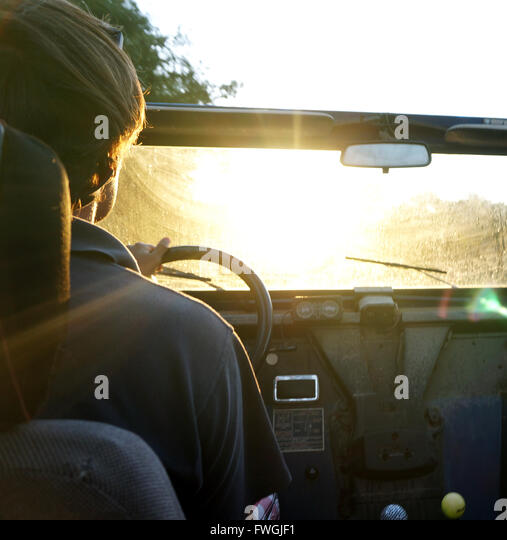 Rear View Of Man Driving Car In Forest On Sunny Day - Stock Image
