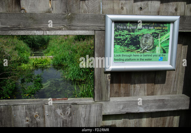 Water Vole Corner viewing point in Rye Meads Nature Reserve, England - Stock Image