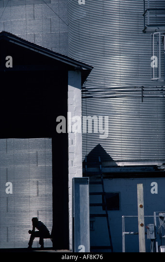 Delaware Delmar metal grain silos silhouetted man agriculture - Stock Image