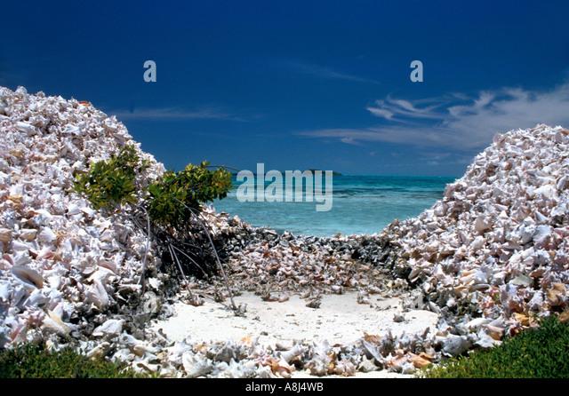 Los Roques Archipelago Venezuela, conch shell piles - Stock Image