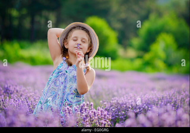 Small girl (6-7) in lavender field - Stock Image