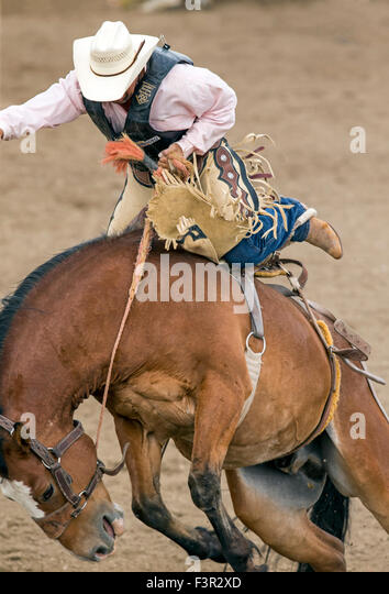 how to stay on a bucking horse
