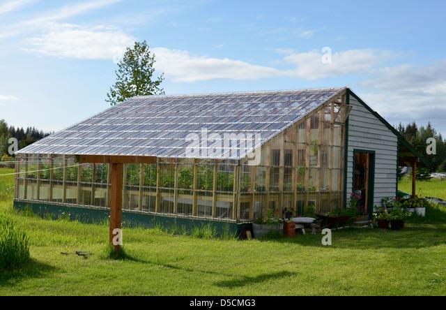 Greenhouse at the Gustavus Inn, Gustavus, Alaska. - Stock Image