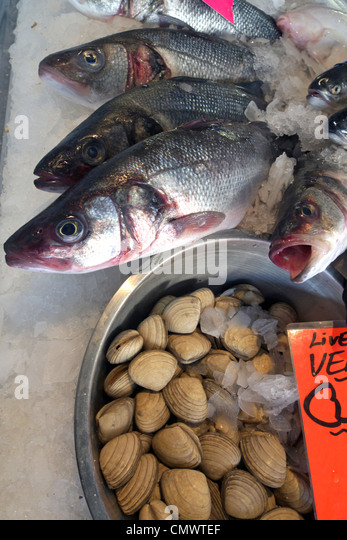 Prices seafood stock photos prices seafood stock images for Fish stocking prices