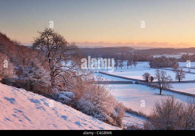 frost and snow on the trees on East Hill overlooking Venn House nr Milborne Port, Somerset, England - Stock Image