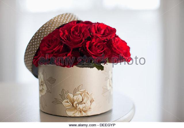Red rose bouquet in gift box - Stock-Bilder