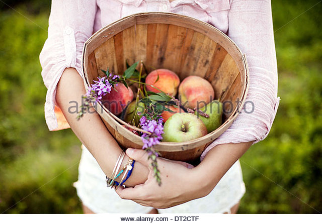 Young woman holding bucket with fruits, mid section - Stock Image
