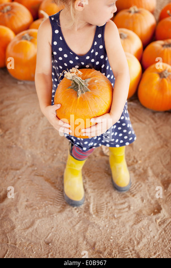 Girl picking pumpkin - Stock Image