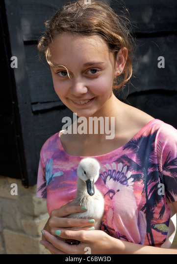 cygnet girls There are six or seven species of swan in the genus cygnus in addition there is another species known as the coscoroba swan black swan and cygnet.