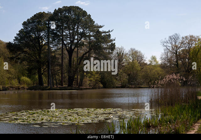 southampton common hampshire england - Stock-Bilder