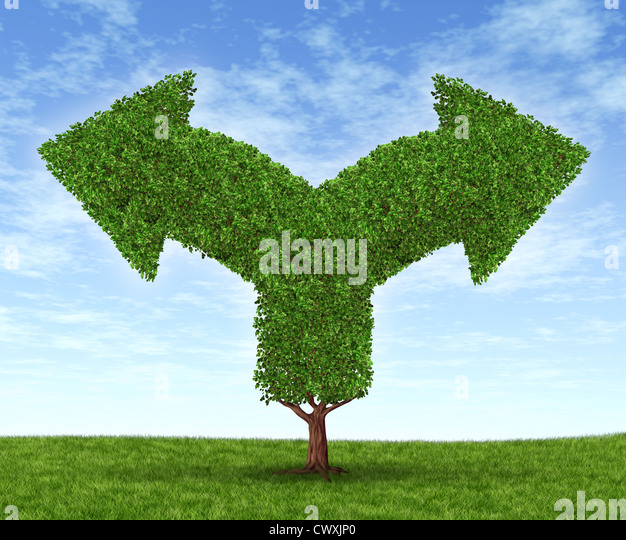 Growing business options and financial dilemma due to growth in financial fortune as a tree and leaves in the shape - Stock Image