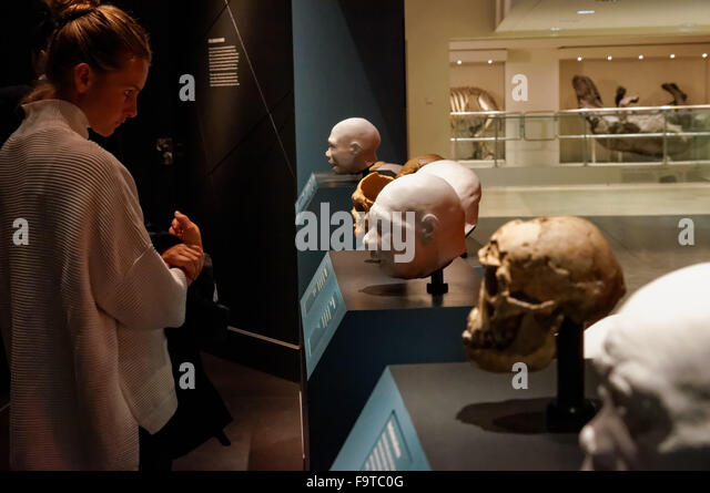 Caveman Museum Stock Photos & Caveman Museum Stock Images - Alamy