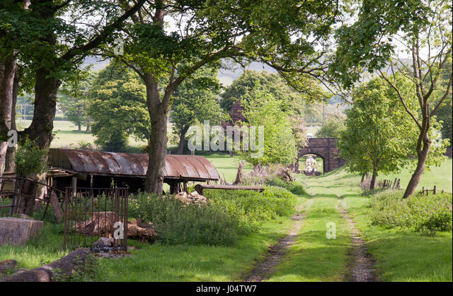 A tree-lined farm track in Edale, Derbyshire, in England's Peak District National Park. - Stock Image