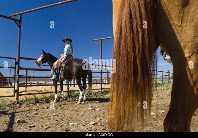 Cowgirl and cowboys working on ranch, wildwest, Oregon, USA - Stock-Bilder