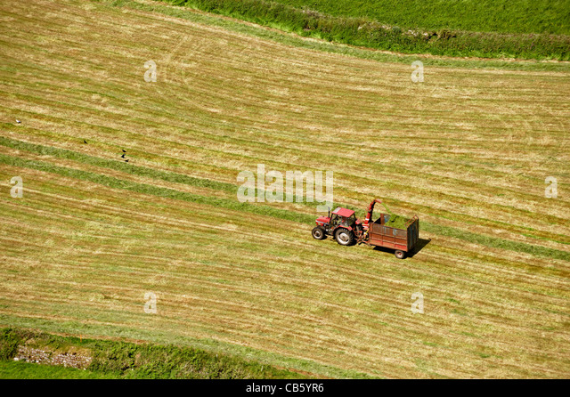 Aerial view of tractor harvesting grass on field to make hay - Stock Image