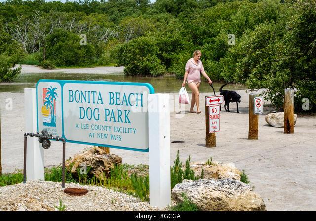 Fort Myers Florida Ft. Beach Long Key Gulf of Mexico Bonita Beach Dog Park at New Pass woman pet Lover's Key - Stock Image