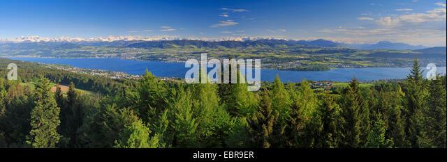 view onto Lake Zurich from the Pfannenstiel, Switzerland, Zuercher Oberland - Stock Image