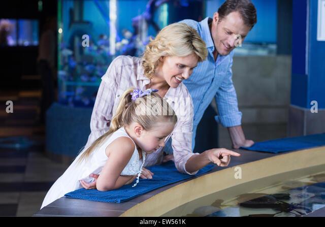 Happy family looking at manta ray - Stock-Bilder