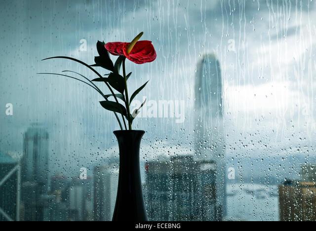 China, Hong Kong, View from hotel room - Stock Image