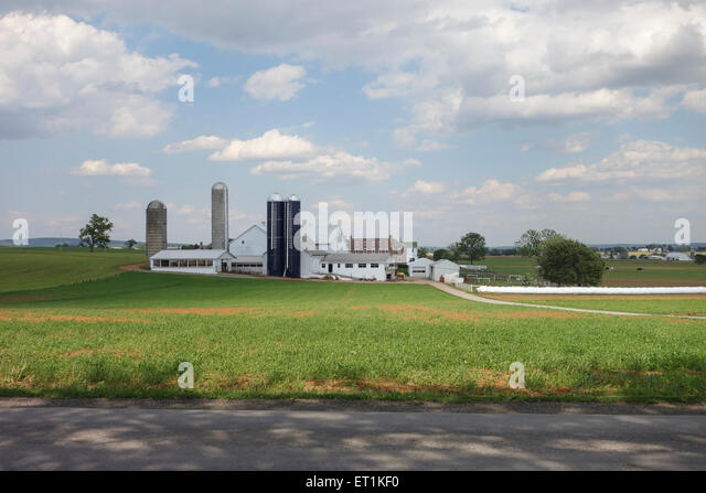 Amish people stock photos amish people stock images alamy Usa countryside pictures
