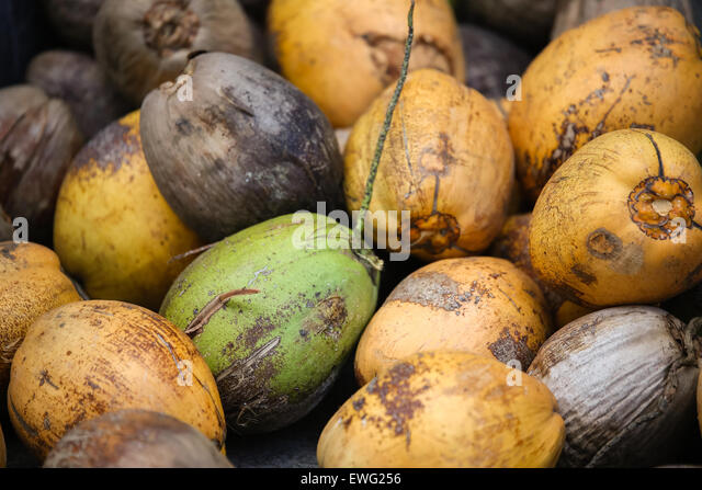 Yellow, Green, and Brown Fruits - Stock Image