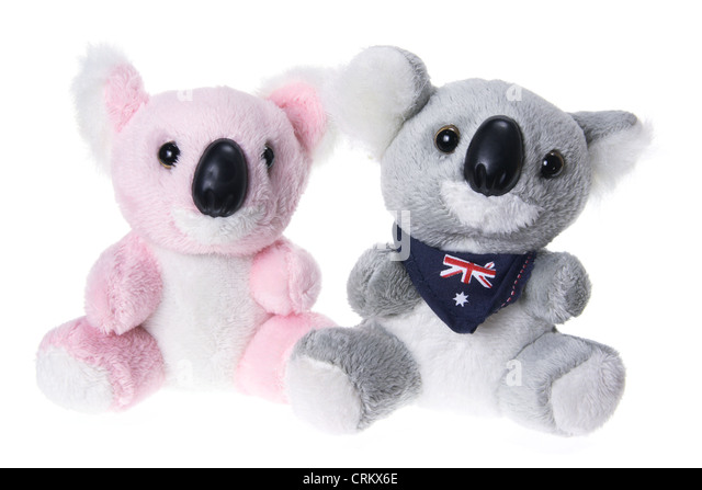 Soft Toy Koalas - Stock-Bilder
