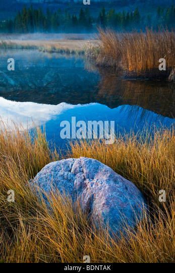 A rural scene with lake and reeds - Stock Image