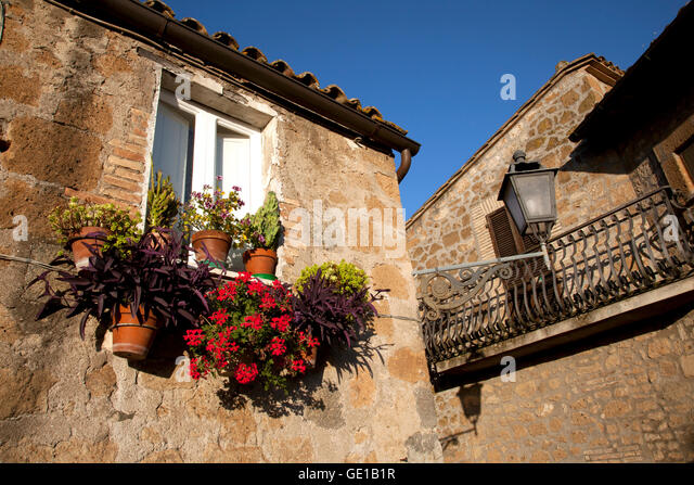 The late afternoon sun lights up flowers on a windowsill in the Mideval Quarter of the Umbrian town of Orvieto, - Stock Image