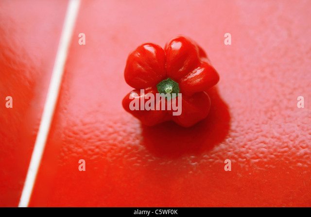 Red bell pepper on red tiles - Stock Image