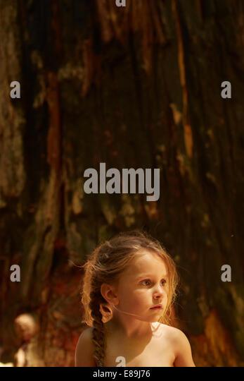 Girl sitting infront of giant redwood tree - Stock-Bilder