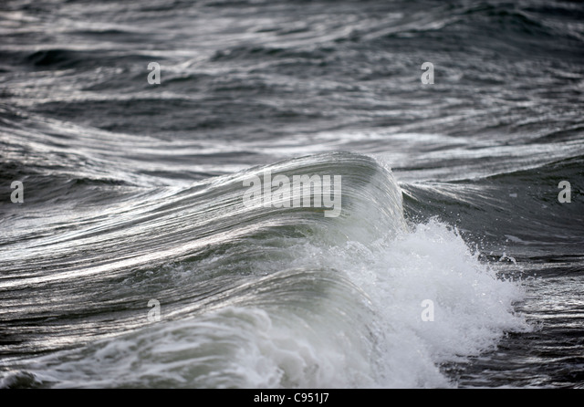 Pacific ocean in storm and waves - Stock Image