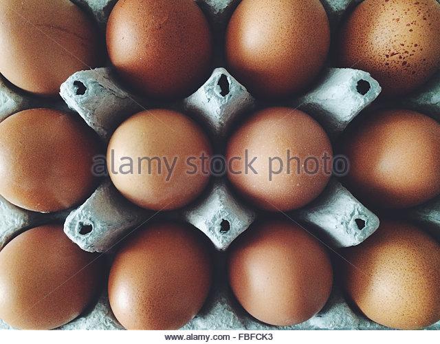 Full Frame Shot Of Brown Egg In Carton - Stock-Bilder