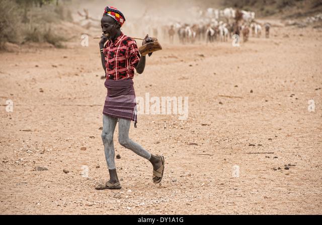 Hamer man safeguarding his goats near Turmi in the Omo Valley, Ethiopia - Stock Image