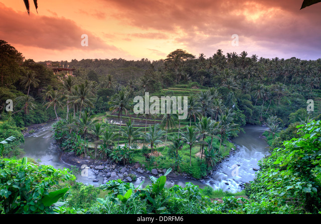 Indonesia, Bali, Ubud, Sayan Valley and Ayung River - Stock Image