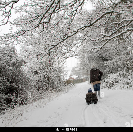 Two people on walk in forest at winter - Stock Image