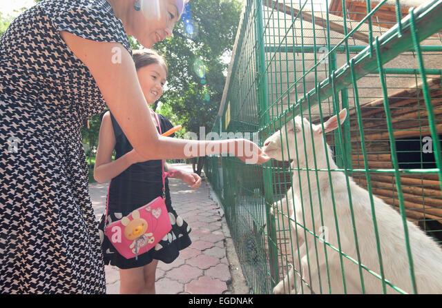 Kok Tobe zoo, Almaty, Kazakhstan - Stock Image