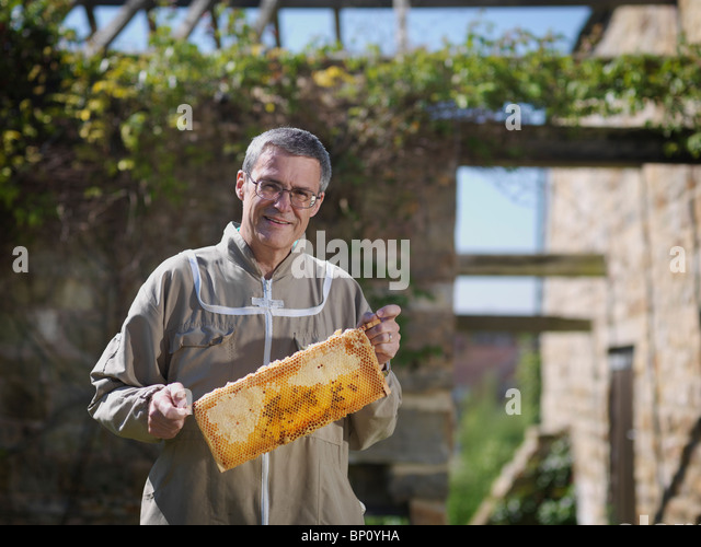 Beekeeper with honey comb - Stock Image