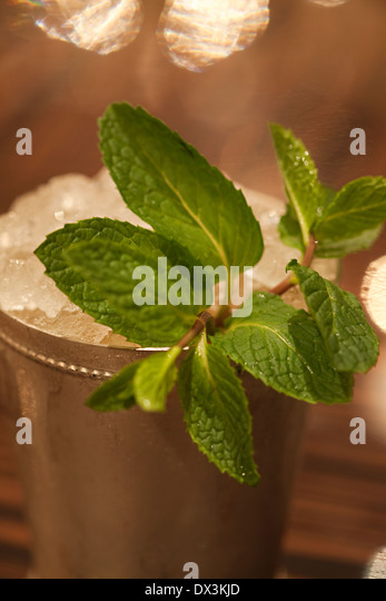 Mint sprig in mint julep in silver cup, close up, high angle view - Stock Image