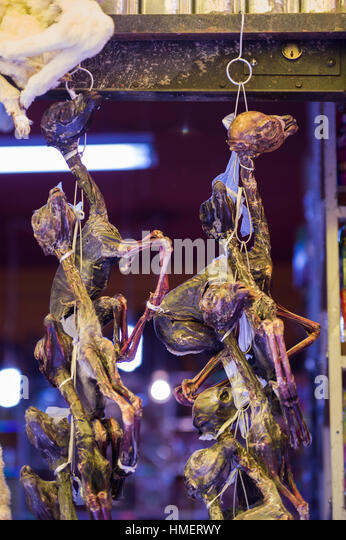 On display dessicated, dried llama fetuses for burning sacrifices, mesa, to la pachamama, mother earth deity, in - Stock Image