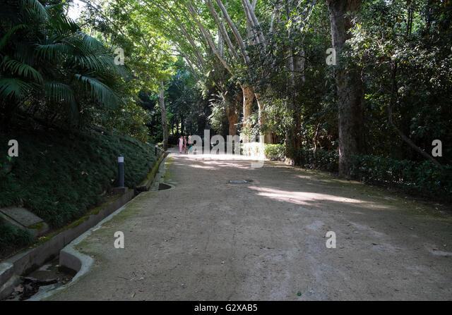 Botanical garden and malaga stock photos botanical for Jardin botanico de malaga