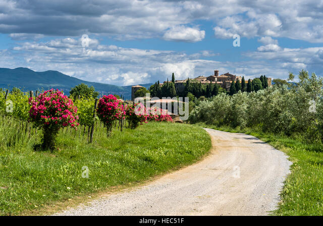 Rose Hill Stock Photos Rose Hill Stock Images Alamy