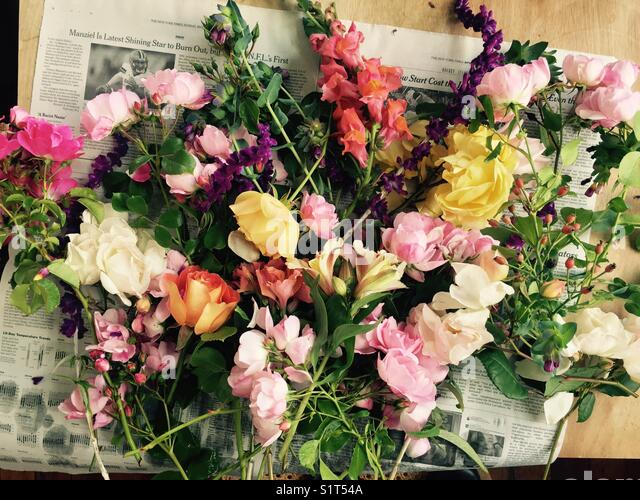 Flowers from the garden - Stock Image