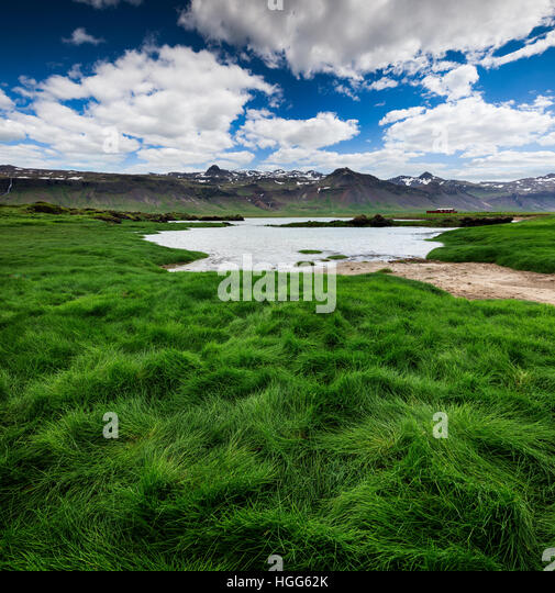 Green grass valley in the volcanic mountains foothill. Sunny summer landscape in the west coast of Iceland, Europe. - Stock Image