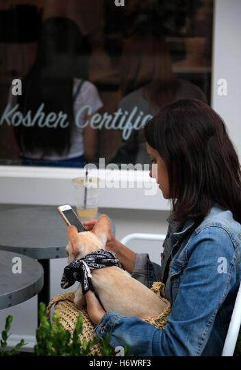 Vegan and Kosher Restaurant, Greenwich Village, Manhattan, New York, USA - Stock Image