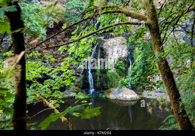 Sitting Lady Falls - Witty's Lagoon Regional Park, Metchosin, near Victoria, Vancouver Island, British Columbia, - Stock Image