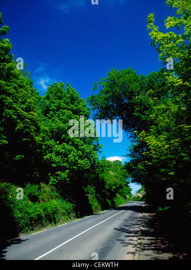 Road In The West Shore, Lough Swilly, Ireland - Stock Image