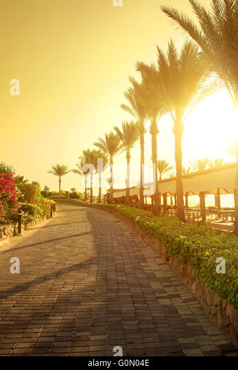 Seafront of paving stone in egyptian park - Stock Image