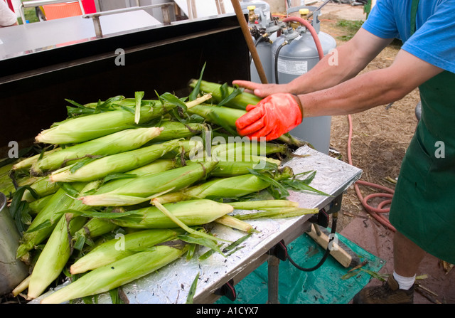 Male vendor preparing corn for grilling at a fair in Connecticut USA. - Stock-Bilder