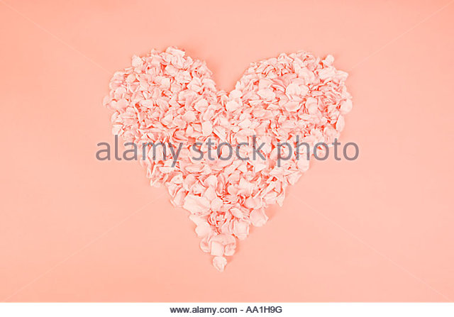 Heart shape of petals - Stock Image