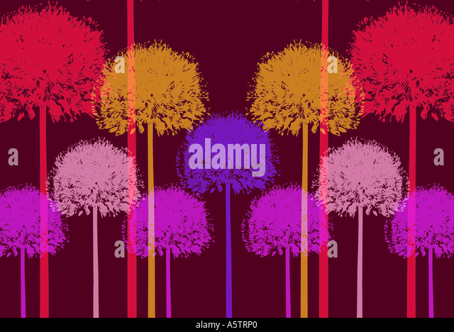 Graphic pattern - Allium illustration - Stock Image